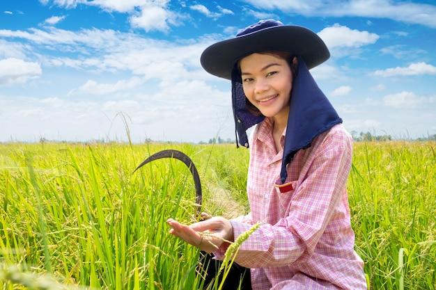 Sorriso felice femminile asiatico del giovane agricoltore e falce della tenuta in un giacimento e un cielo blu verdi del riso