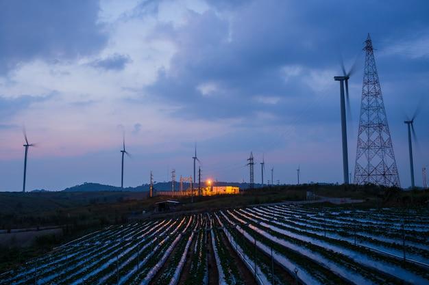 Sottostazione e mulino a vento ad alta tensione con il cielo blu del giacimento della fragola al tramonto.