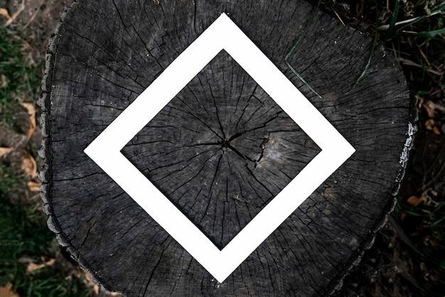 Spazio della copia della disposizione con la struttura di carta bianca su una vista superiore di struttura dell'albero di taglio di legno.