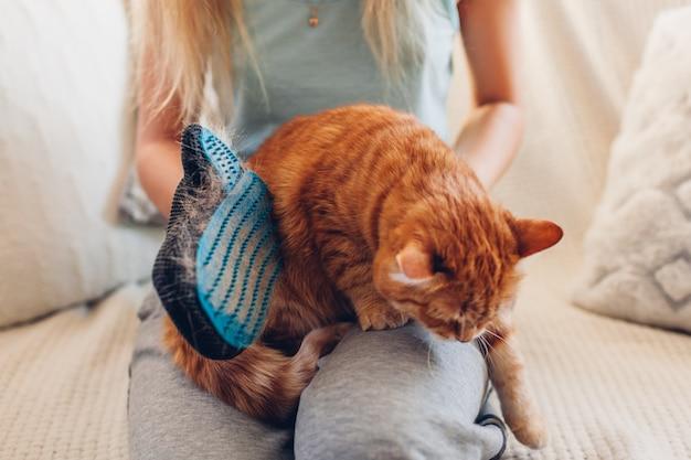 Spazzolare il gatto con un guanto per rimuovere i peli di animali domestici. donna che prende cura dell'animale che lo pettina con il guanto di gomma della mano