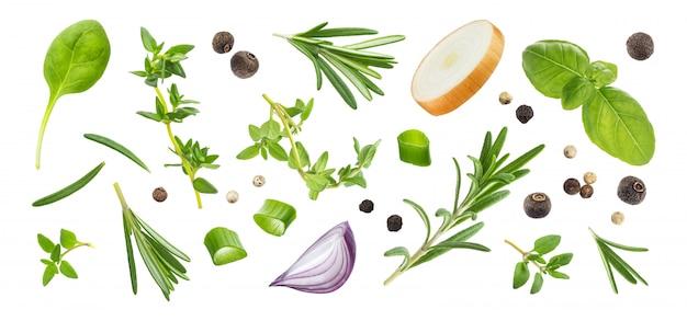 Spezie ed erbe differenti isolate sulla vista bianca e superiore