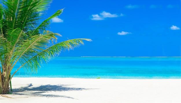 Spiaggia alle maldive