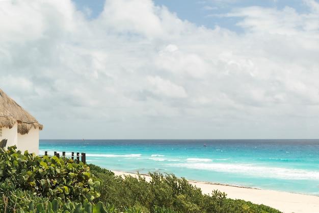 Spiaggia con costruzione e piante in tempo nuvoloso