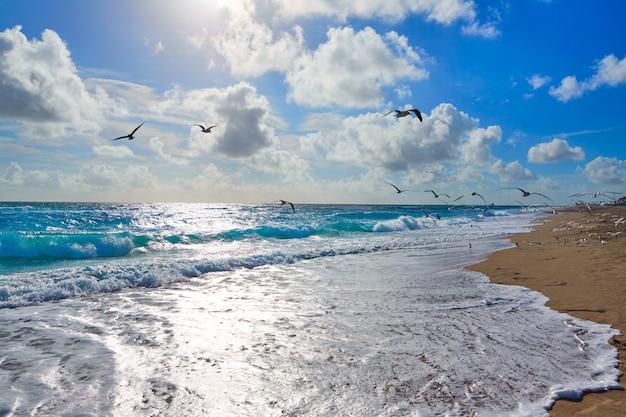Spiaggia dell'isola di cantante a palm beach florida stati uniti