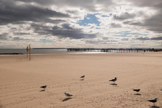 Spiaggia dell'isola di coney