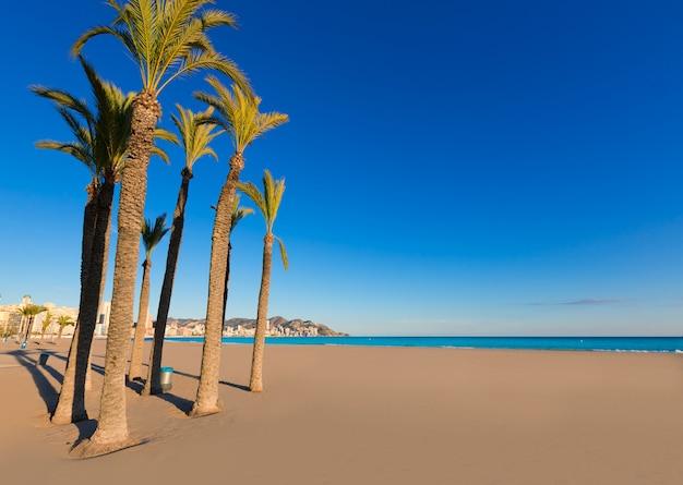 Spiaggia di benidorm alicante playa de poniente in spagna