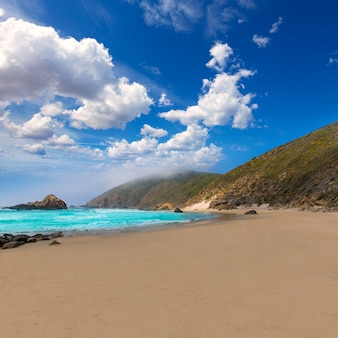 Spiaggia di california pfeiffer in big sur state park