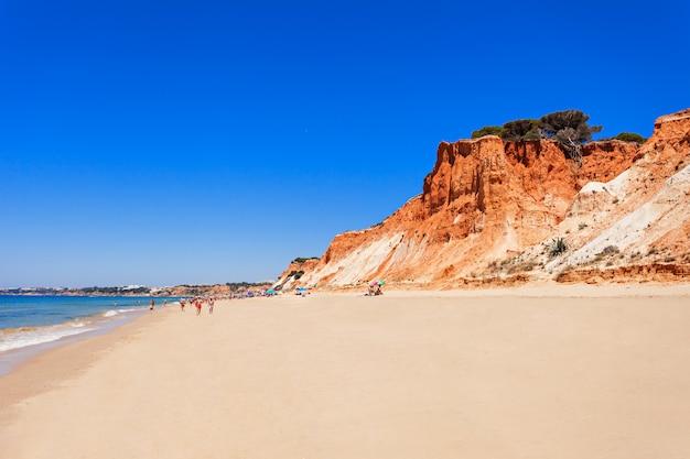 Spiaggia di falesia