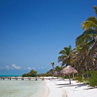 Spiaggia di isla contoy, in messico