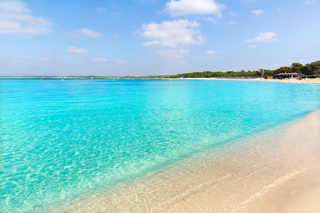 Spiaggia di mallorca marques es trenc estany estanque