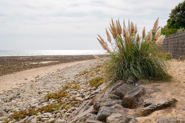 Spiaggia di saint vincent sur jard vendee france