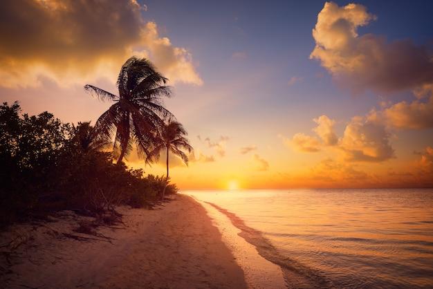Spiaggia di tramonto dell'isola di holbox messico