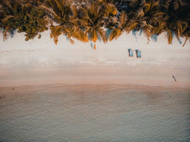 Spiaggia e mare tropicali della bella natura con l'albero del cocco sull'isola di paradiso