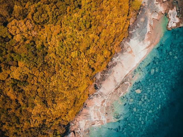 Spiaggia e mare tropicali della bella natura