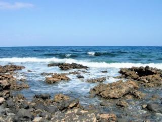 Spiaggia, il canarino esterno isole