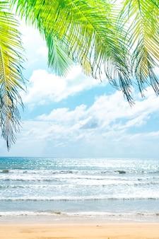 Spiaggia pulita della natura tropicale e sabbia bianca di estate con il cielo blu-chiaro del sole e il fondo del bokeh.