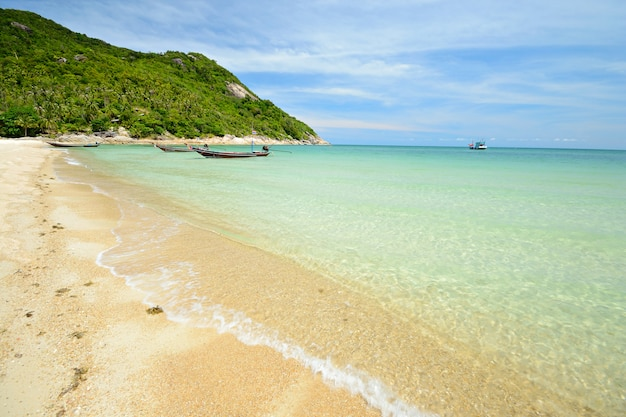 Spiaggia tropicale con acqua turchese in tailandia