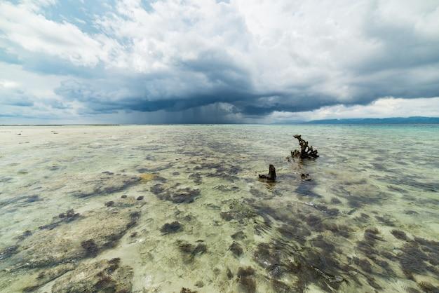 Spiaggia tropicale, mare caraibico, acqua trasparente del turchese, isole togean indonesia.
