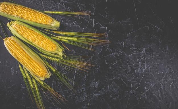 Spighe di mais e grano