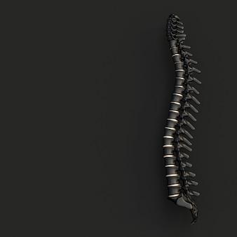 Spina dorsale nera e oro su uno stile piatto nero