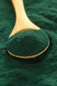 Spirulina organica in polvere