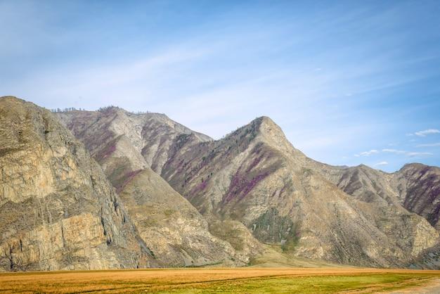 Splendida vista estiva della valle di montagna in una giornata di sole.