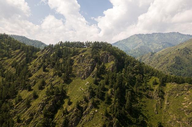 Splendida vista sulle alte montagne con foresta