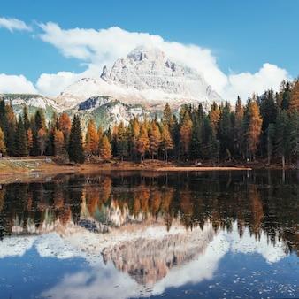 Splendide montagne in nuvole. grande paesaggio. bosco vicino al lago