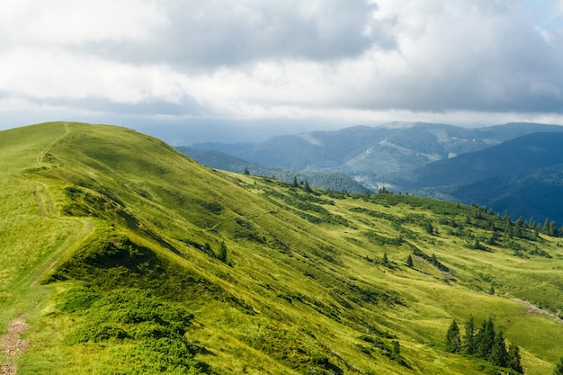 Splendido paesaggio delle montagne dei carpazi ucraini.