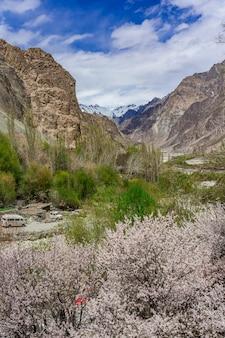 Splendido paesaggio di montagna della valle di turtuk e il fiume shyok.
