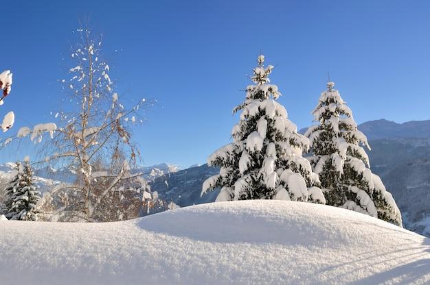 Splendido paesaggio invernale