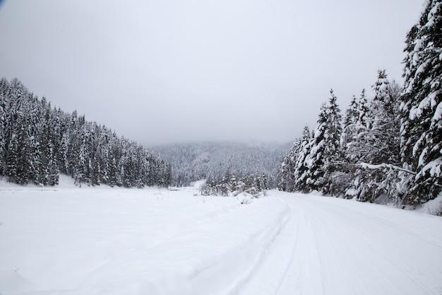 Splendido paesaggio montano invernale