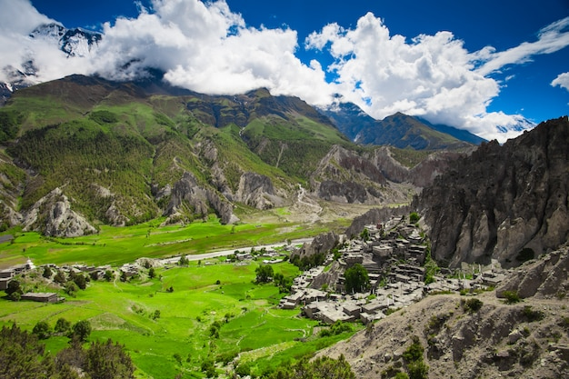 Splendido paesaggio naturale di montagna
