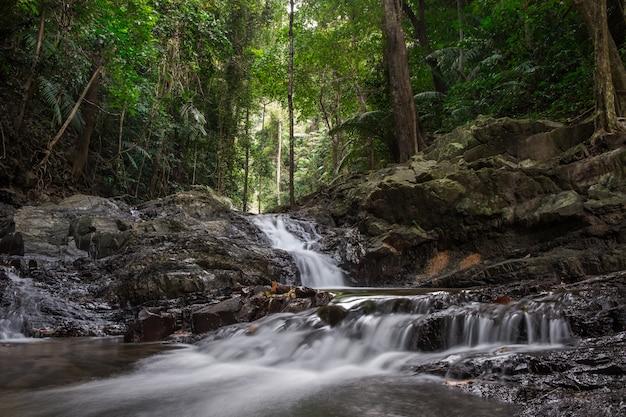 Splendido scenario con una cascata in una foresta pluviale
