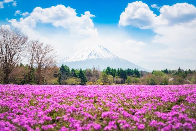 Splendido scenario del maestoso monte fuji