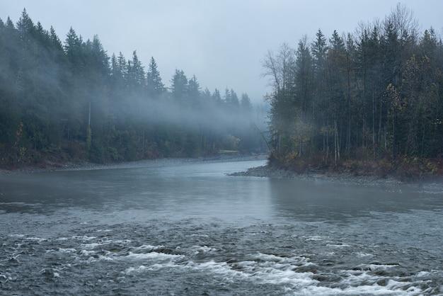 Splendido scenario di un fiume circondato da alberi verdi avvolti dalla nebbia