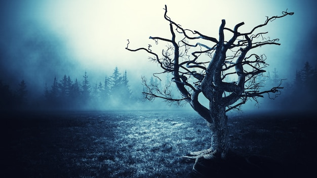Spooky tree night background.
