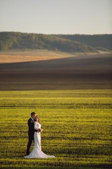 Sposa tra le braccia dello sposo su uno sfondo di campi di primavera e cielo blu