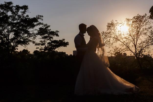 Sposi emotivi che abbracciano e baciano all'aperto la sera. giorno del matrimonio . sagoma di sposi sul tramonto sulla natura