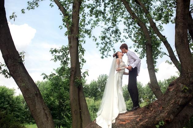 Sposo e sposa baciare su un albero