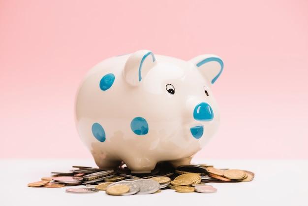 Spotted porcellino salvadanaio in ceramica sopra monete