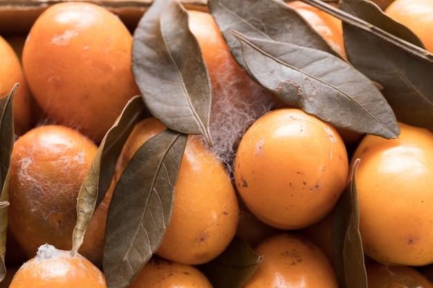 Spreco di cibo. rifiuti di frutta frutta ammuffita