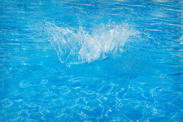 Spruzza dell'acqua blu nel primo piano dello stagno. copia spazio