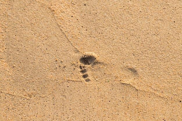 Stampa del piede del bambino sullo sfondo spiaggia