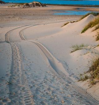 Stampa della gomma di automobile di trazione integrale sulla duna di sabbia nella spiaggia di trafalgar, cadice, spagna.