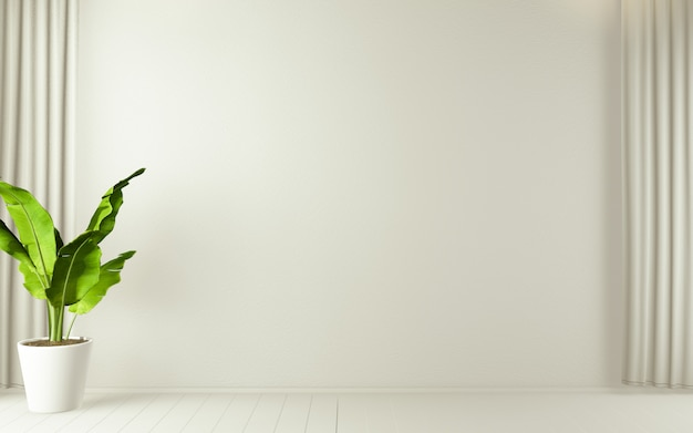 Stanza vuota bianca su pavimento in legno bianco interior design e piante di decorazione. rendering 3d