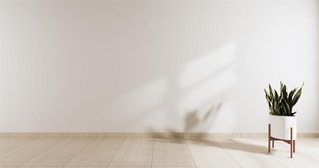 Stanza vuota con la parete bianca e una pianta