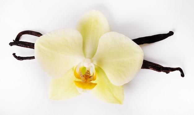 Stecca di vaniglia