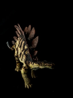 Stegosaurus dinosaur su nero
