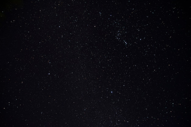 Stella di notte